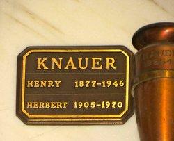 Henry Knauer