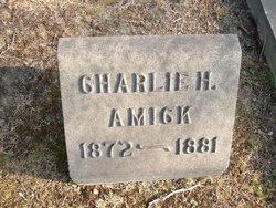 Charles Howard Amick