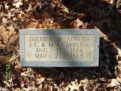 Joshua M Appling