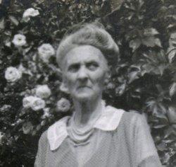 Sarah E <i>Reynolds</i> Cook