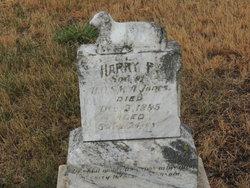 Harry P Jones