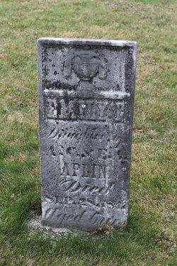 Emily P. Aplin