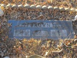 James C. L. Lee Brown