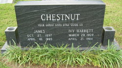 Ivy <i>Harriet</i> Chestnut