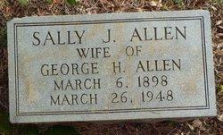 Sallie James <i>Hicks</i> Allen