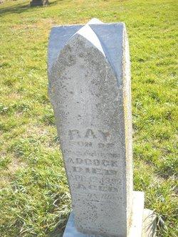 Ray Adcock