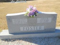 Aszonie <i>Parks</i> Foster