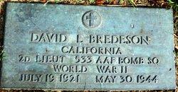 David L Bredeson
