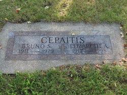 Bruno Stanley Cepaitis