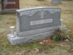 John Arena