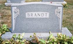 Henry Brandt