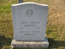 Adelaide B Ambrose