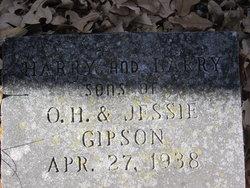 Harry Gipson