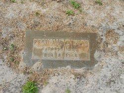 Reginald Ryberg Webb