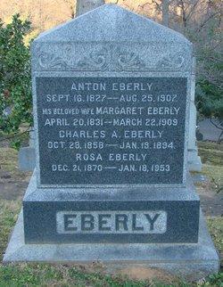 Anton Eberly
