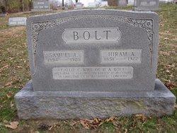 Hiram Alexander Pete Bolt