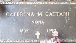 Caterina Mattei <i>Mattei</i> Cattani