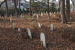Noroton River Graveyard