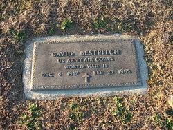 David Bestpitch