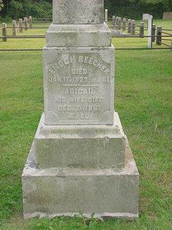 Abigail Beecher