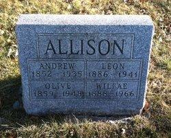 Andrew W Andy Allison