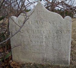 Samuel Augustus Blakeslee