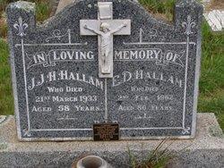 J J.H Hallam