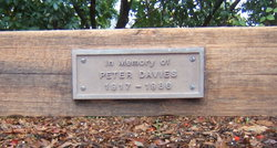 Elwyn Peter Davies