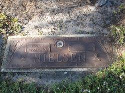Paul A Nielsen