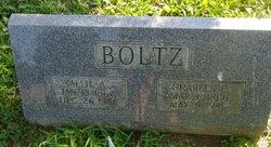 Sallie A <i>McKinney</i> Boltz