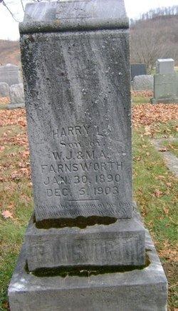 Harry L Farnsworth