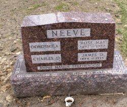 Richard Leroy Buzz Neeve