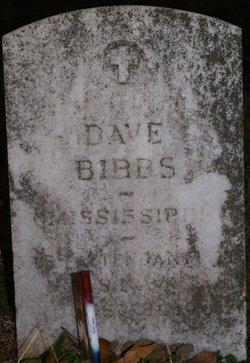 Dave Bibbs