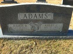 Julius Benson Adams
