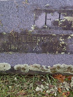 Frederick Alonzo Fellows