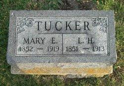 Mary Evelyn Eva <i>Buck</i> Tucker