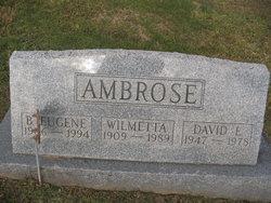 David E. Ambrose