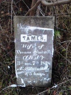 Tamer <i>Lundy</i> Shotwell