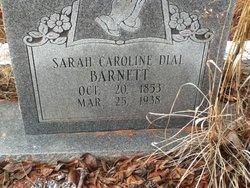 Sarah Caroline <i>Dial</i> Barnett