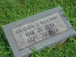 Amanda J. Williams