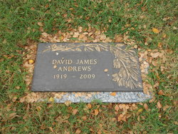 David James Andrews