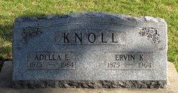 Ervin K. Knoll