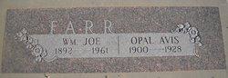 William Joseph Big Joe Farr