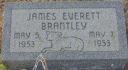 James Everett Brantley