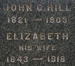 Ruth Elizabeth <i>Cure</i> Hill