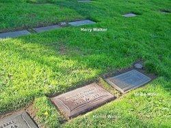 Harry Andrew Walker