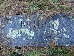 Arthur Stanley Briggs