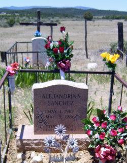 Alejandrina <i>Martinez</i> Sanchez