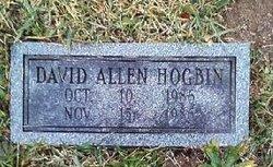 David Allen Hogbin