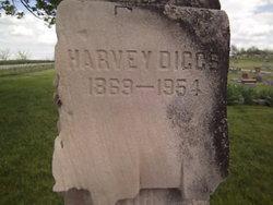 Harvey Diggs